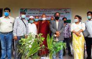 বান্দরবানে পার্বত্য জেলা পরিষদের উদ্যোগে প্রান্তিক কৃষক ও বিভিন্ন প্রতিষ্ঠানের মাঝে চারা বিতরণ
